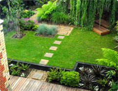 Gardening in London from Top Gardenig Services