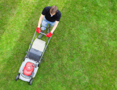 Lawn Mowing from Top Gardening Services